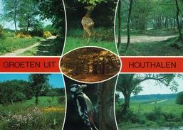 HOUTHALEN-GROETEN UIT - Opglabbeek