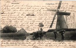 1 PC  Calmthout  Kalmthout Heidemolen  Uitg Hoelen N°405 Anno 1904 - Kalmthout