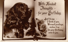 Dog Card -  With Kindest Thoughts......     RPPC. - Perros