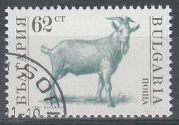 D5900 - Bulgaria Mi.Nr. 3882A O/used