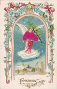 Christmas Angel , Silk Suit & Carrying Tree , 1908 - Angels