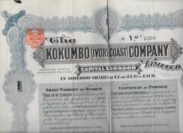 KOKUMBO Company 1903 - Actions & Titres