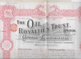 THE OIL ROYALTIES TRUST  Numéro 488 Année 1911 - Pétrole