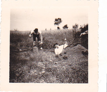 25963 Six 6 Photo BELGIQUE  - Camp Ecole  -scout -scoutisme -avant 1945 -repas Ferme - Guerre, Militaire
