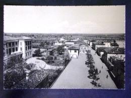 EMILIA ROMAGNA -BOLOGNA -MEZZOLARA -F.G. LOTTO N°576 - Bologna