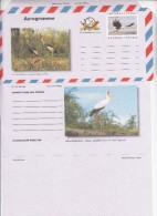 Uganda 2000 International Aerogramme + Birds Stork Crane Theme And Eagle Stamp  - Unfolded Unused - Aigles & Rapaces Diurnes