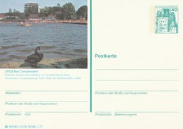 1977 GERMANY Postal STATIONERY CARD Illus BLACK SWAN Bird At BAD ZWISCHENAHN  Cover Stamps  Swans Birds