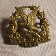 "Ww2 New Zealand - 14th ""South Otago Rifles"" Regiment KIA AKE KAHA Collar - United Kingdom"