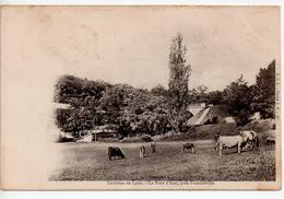 CPA.69.1902.Le Pont D'Alaï Près De Francheville.animé Une Femme Et Des Vaches. - Frankreich