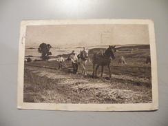 A417. CPA.  LABOUR AU CHAMP.. .beau Plan Animé. Ecrite & Voyagée 1915 - Cultivation