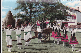CPSM   Le Folklore Basque  64  Fandango - France