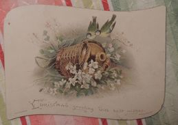 Christmas Greetings With Best Wishes  - Hagelberg  N°326 - Mésanges - Noël