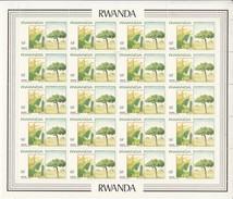 1984 Rwanda 19F Local Tree Complete Sheet Of 20 MNH  Bargain!! - Bäume