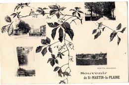 SOUVENIR DE SAINT-MARTIN-LA-PLAINE (MULTIVUES) - Autres Communes