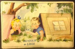 CP. 1956. Bonjour De Liège.  Carte à Système Avec Dépliant. - Liege