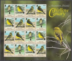 Ascension Island 2010 Bloc Feuillet Oiseau Canari Jaune Neuf ** - Ascension (Ile De L')