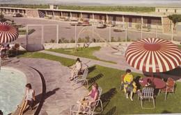 SAN LUIS POTOSI, Mexico, PU-1985; Cactus Motel, Swimming Pool - México