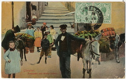 Gibraltar Artichokes And Water Seller Donkey P. Used Marchand Eau Et Artichauts - Gibraltar