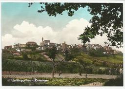 ASCOLI PICENO (024) - GROTTAZZOLINA Panorama - FG/Non Vg - Ascoli Piceno