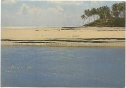 T1853 Natal - Vista Parcial Do Rio Pium Na Praia De Pirangi Do Sul / Non Viaggiata - Natal