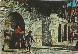 T1861 Ephesus - Meryem Ana - Pinarin Cesmeleri / Non Viaggiata - Turchia