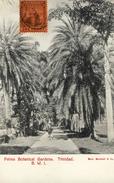 CPA (antilles)   TRINIDAD Palms Botanical Gardens - Trinidad