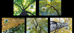 Liechtenstein 2016 Maxi Cards - Trees