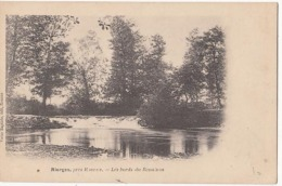 Dep 42 - Riorges - Les Bords Du Renaison - Carte Précurseur : Achat Immédiat - Riorges