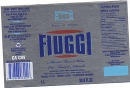 Etichetta Acqua Minerale FIUGGI In Lingua USA  Tipo Argento NATURAL - Other