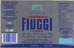 Etichetta Acqua Minerale FIUGGI In Lingua USA  Tipo Argento Sparkling NATURAL - Other