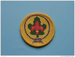 ( Speld - Epingle - Pin - Brooch - Badge ) Zie Foto Voor Détail ! - Scouting