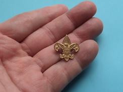 Identify ( Speld - Epingle - Pin - Brooch - Badge ) Gold Color / Zie Foto Voor Détail ! - Padvinderij