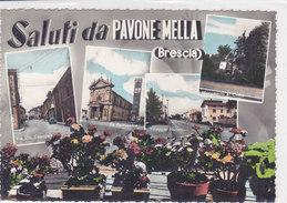 CARD PAVONE MELLA  SALUTI DA .. VEDUTINE  (BRESCIA)     -FG-VSF-2-  0882-  26675 - Brescia