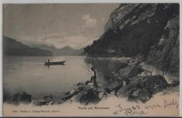 Partie Am Walensee - Photo: Trümpi-Knobel No. 8572 - GL Glaris