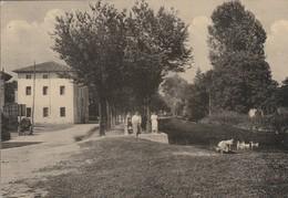 UDINE - CASTIONS DI ZOPPOLA - FIUME CASTELLANA.......CCC - Udine