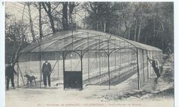 Cpa  -34-     Lamalou-les-bains Piciculture De Rodier 1907 - Lamalou Les Bains