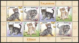 TH Belarus 2017 Kittens Kitten Cats Cat Fauna S/S Klbg Of 2 Sets MNH - Postzegels