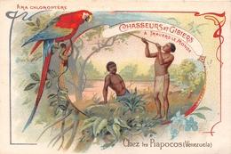 VENEZUELA - Carte Chromo - Chasseurs Et Gibiers - Les Piapocos - Ara, Pérroquet  - Voir Description - Venezuela