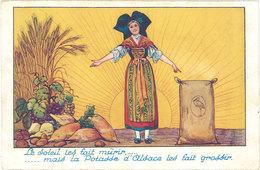 Cpa Pub : Potasse D'Alsace, Mulhouse ( Alsacienne, Cigogne, Soleil, Légumes, Raisins, Navets ) - Publicité