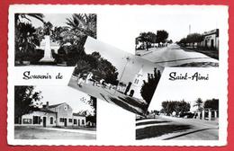 Algérie. Souvenir De Saint-Aimé ( Djidioua-Relizane). Monument Aux Morts, église St.Aimé, Mairie, école.1953 - Algérie