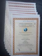 Lot 8 Certificat SUEZ-LYNNAISE Eaux (Non Annulé) - Azioni & Titoli