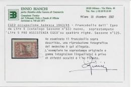 Italy Occupazione Tedesca Pro Assistenza Egeo  Sassone Nº 118/125 Y E3/E4 Catalog Value 1250€ Certificate - Egeo