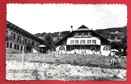 74.Lucinges. Aérium Le Chalet Lorrain. Colonie De Vacances AMOL, Metz.  1961 - Autres Communes