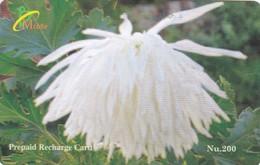 Bhutan, Nu.200 White Flower, 2 Scans. - Bhutan