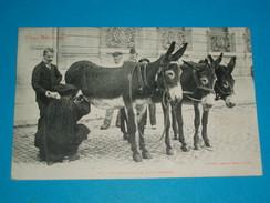 31 ) Type Méridionaux N° 10 : La Marchande De Lait D'anesses :  Année 1908 - EDIT : Labouche - Non Classés