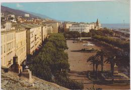 HAUTE CORSE,CORSICA,BASTIA,PALMIER,PARC SAINT NICOLAS - Bastia