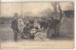 LA MORT DU COCHON     /////   REF JANV. 17 // BO 40 - France