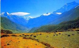 Marshyangdi Balley - Himalaya -  Nepal - 10 - Formato Grande Viaggiata - E - Nepal