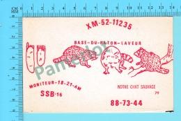 QSL- CB-  Base Du Raton Laveur, Racoon - Montreal Quebec- 2 Scans - CB
