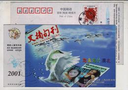 Swan Bird,China 2001 Wenzhai Magazine Advertising Pre-stamped Card